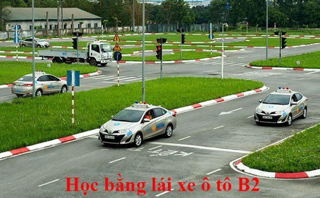 hoc-bang-lai-xe-oto-b2