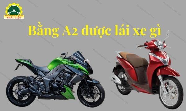 Bang-lai-xe-may-A2-2